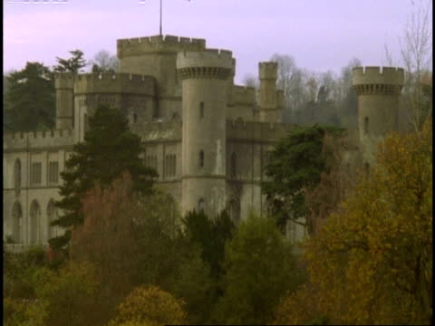 eastnor castle, herefordshire - cu, various trees in foreground - herefordshire stock videos & royalty-free footage