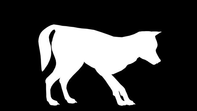 vídeos y material grabado en eventos de stock de comer lobo (en bucle) - pata com garras