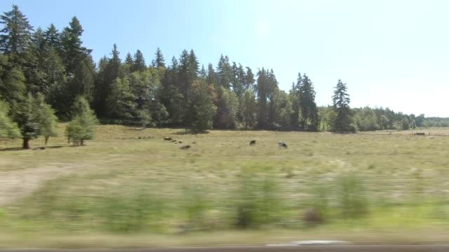 stockvideo's en b-roll-footage met eatonville country xx gesynchroniseerde serie rechts weergave rijproces plaat - stopbord