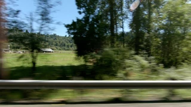 vídeos de stock, filmes e b-roll de eatonville country xxiii sincronizado série direita vista de condução placa de processo - veículo terrestre