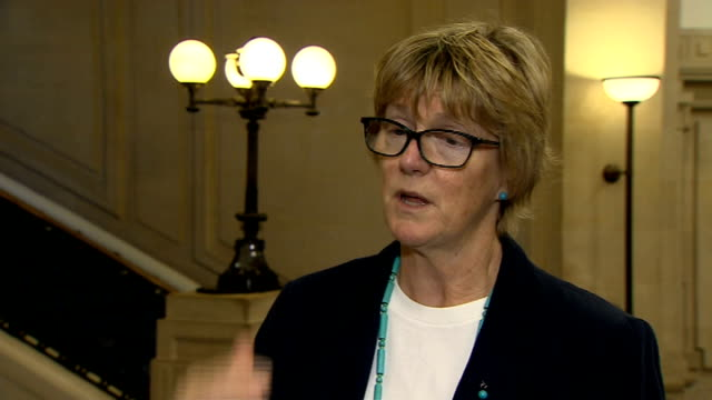simulation exercise carried out in uk / death toll in africa passes 4000 london int professor dame sally davies interview sot the big problem is in... - handful stock videos & royalty-free footage