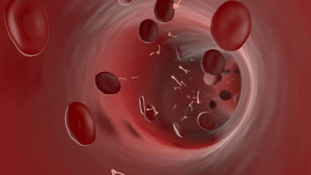 ebola virus travels through blood system - translucent stock videos and b-roll footage