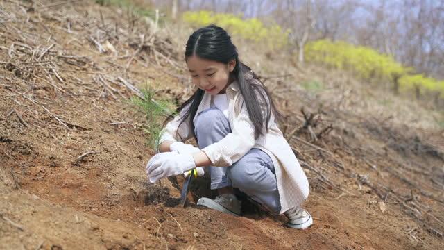 vídeos y material grabado en eventos de stock de echo campaign - child gathering dirt by trowel and planting sapling of tree - conservacionista