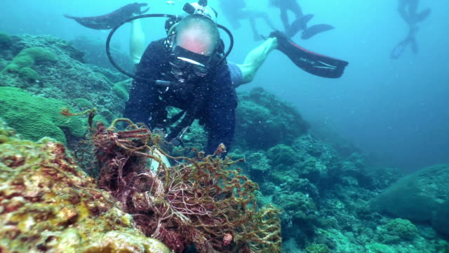 eco tourist scuba diver on underwater environmental conservation cleanup removing discarded fishing net pollution from coral reef - fishing net stock videos & royalty-free footage