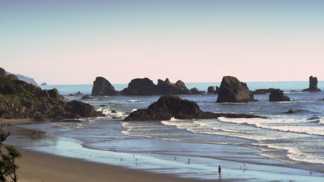 ecola state park beach at sunset with people - oregon coast stock videos & royalty-free footage