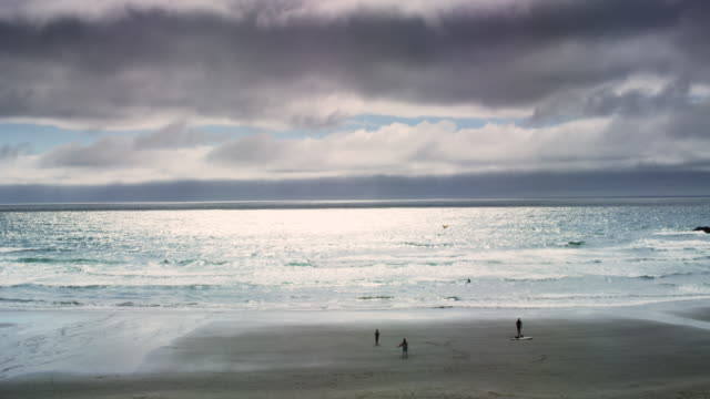 vídeos de stock, filmes e b-roll de ecola state park beach with kite - costa de oregon