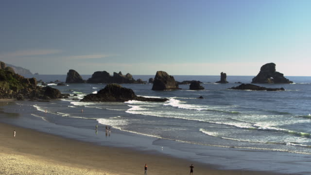 ecola state park beach with people - oregons küste stock-videos und b-roll-filmmaterial