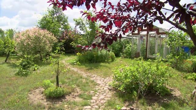 ecological garden - strauch stock-videos und b-roll-filmmaterial