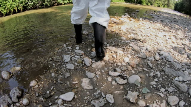 ecologist analyzes the state of water in a forest river - campione di laboratorio video stock e b–roll