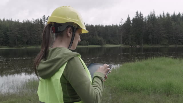 ecologists on the fieldwork. examining the natural condition of the forest and taking samples for deeper research. - environment stock videos & royalty-free footage