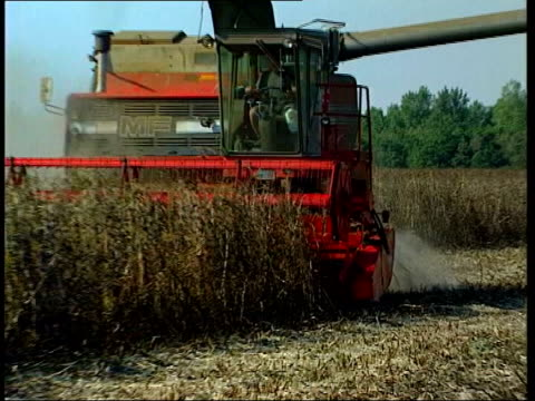 stockvideo's en b-roll-footage met eu to reform cap itn combine harvester cutting down wheat pull out - cut video transition
