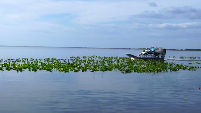 ecotourism, three lakes, florida, usa, america - ecoturismo video stock e b–roll