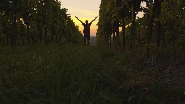 verzückt farmer faust in der luft in die vineyard - weinberg stock-videos und b-roll-filmmaterial