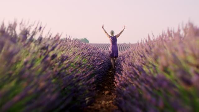 ラベンダー畑を駆け抜けるwsエスタティックな女性 - 回転する点の映像素材/bロール