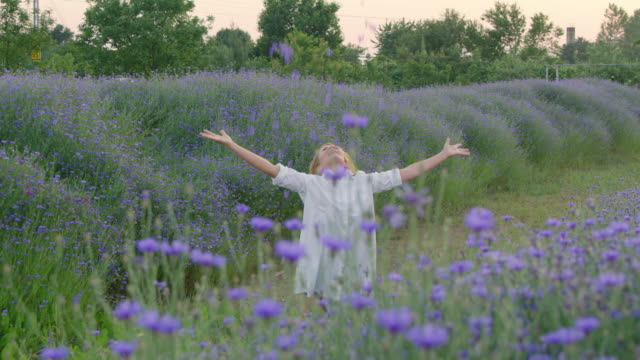 slo mo ecstatic woman throwing cornflowers up in the air - only mid adult women stock videos and b-roll footage