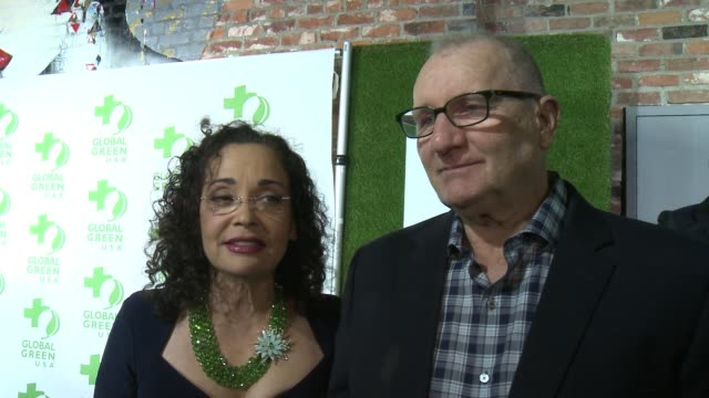interview ed o'neill catherine rusoff on the event at 14th annual global green preoscar® party in los angeles ca - catherine rusoff stock videos & royalty-free footage