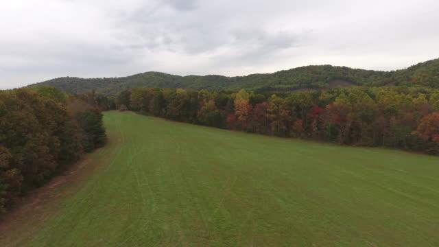 秋の森の端 - バージニア州点の映像素材/bロール