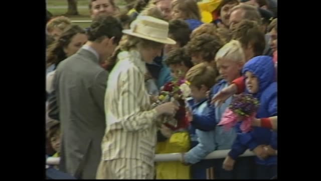 stockvideo's en b-roll-footage met raaf jet taxies / prince charles and princess diana exit plane down steps and greet official party – windy conditions / crowd / royal couple meet and... - 1983
