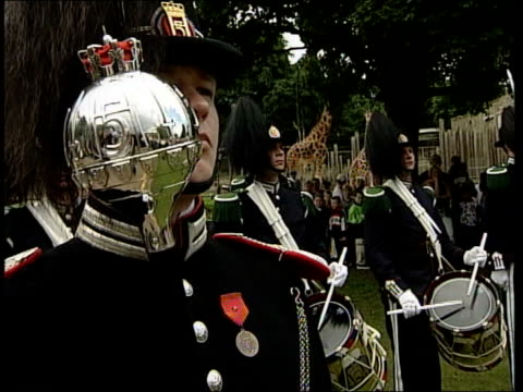 edinburgh edinburgh zoo ext lms king penguin nils olav along from enclosure to receive honours ms little girl watching gv military band playing ms... - major military rank stock videos and b-roll footage