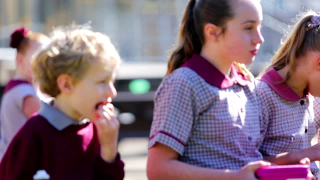 education children eating healthy lunch at school - primary school child stock videos & royalty-free footage
