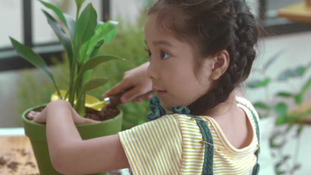 education concepts :  agricultural activity - only girls stock videos & royalty-free footage