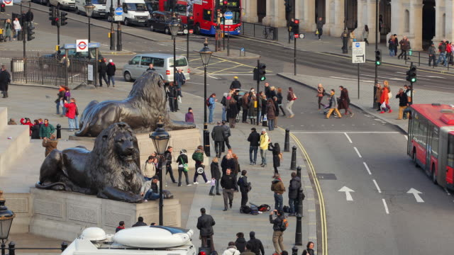 t/l ms zo ws ha edwin landseer's lions guarding nelson's column and traffic on trafalgar square / london, england - guarding stock videos & royalty-free footage