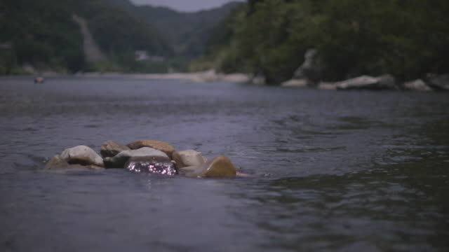eel pot in river, wakayama, japan - meeraal stock-videos und b-roll-filmmaterial