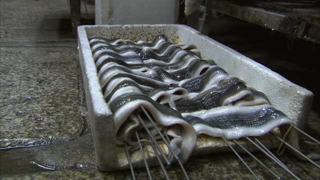 cu eels on skewers, nishiki market, kyoto, japan - saltwater eel stock videos & royalty-free footage