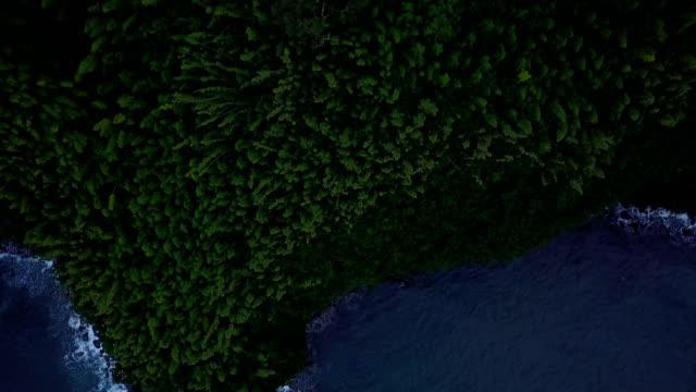 EGDE de Maui Island loin ci-dessous du Drone Point de vue