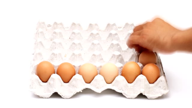 egg on tray, time lapse shot. - tray stock videos & royalty-free footage