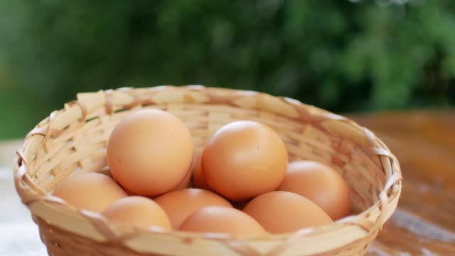 eggs in the basket - egg stock videos & royalty-free footage