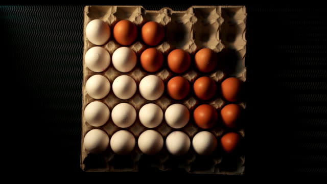 eggs montage - egg stock videos & royalty-free footage