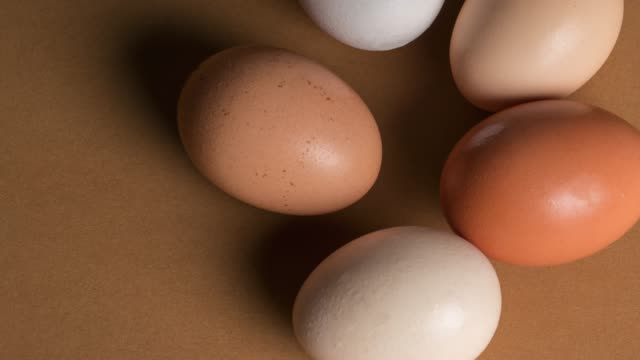 eggs over brown background - brown background stock videos and b-roll footage