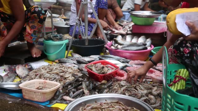 stockvideo's en b-roll-footage met eggs sit in baskets at a market stall in yangon myanmar on tuesday oct 6 a shopper selects prawns from a seafood vendor in a market in yangon a... - steurgarnaal