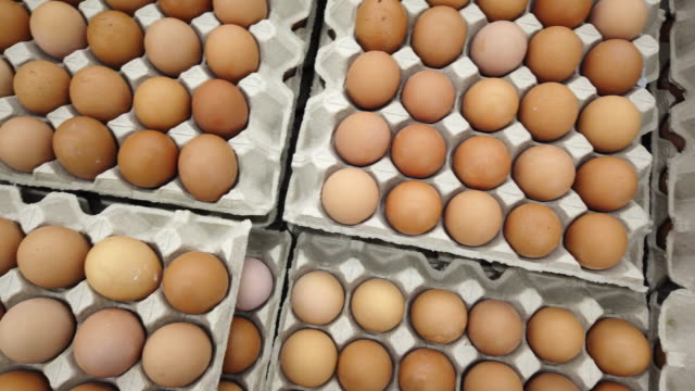 eggs - tray stock videos & royalty-free footage