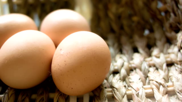 eggs - egg stock videos & royalty-free footage