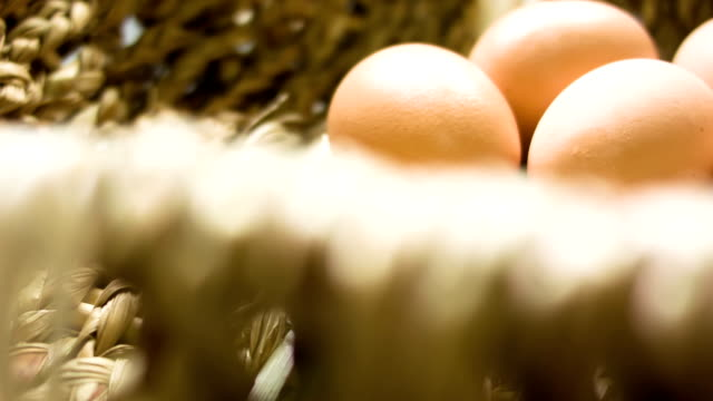 eggs - human egg stock videos & royalty-free footage