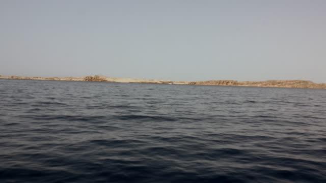 egypt landscape - sinai egitto video stock e b–roll