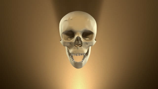eight (8) loopable singing skulls for halloween (with alpha-matte channel) - spokesman stock videos & royalty-free footage