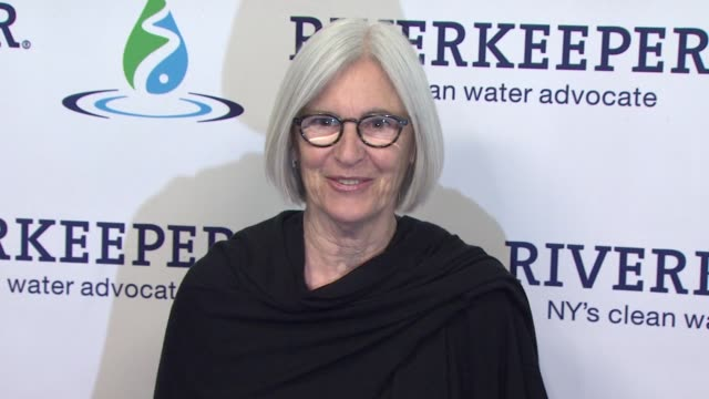 eileen fisher at riverkeeper's 50th anniversary fishermen's ball at pier sixty at chelsea piers on may 18, 2016 in new york city. - chelsea piers stock videos & royalty-free footage