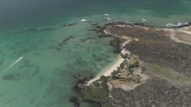 El archipielago ecuatoriano de Galapagos esta aumentando continuamente su influjo de turistas lo que desperto el debate entre proteger el ecosistema...