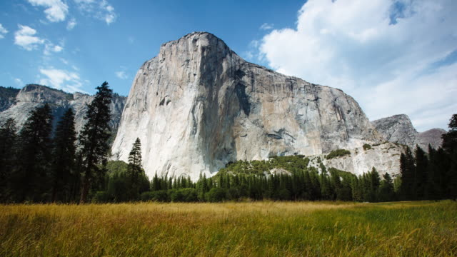 el capitan meadow - yosemite national park stock-videos und b-roll-filmmaterial
