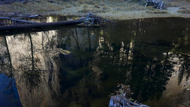 el capitan reflection into merced river with pines, yosemite valley, yosemite national park, california, 4k video - igneous stock videos & royalty-free footage
