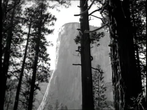 El Capitan the Half Dome and Yosemite Falls make up some of the natural beauties of Yosemite National Park