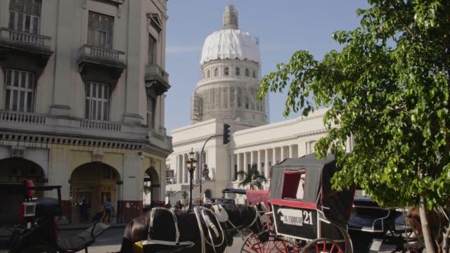 vídeos de stock e filmes b-roll de el capitolio and a horse chariot in havana, la habana, cuba, west indies, caribbean, central america - animal de trabalho