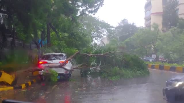 el ciclón tauktae llegó el lunes a india acompañado de vientos muy fuertes y lluvias torrenciales, en momentos en que el país lucha contra una... - extreme weather stock videos & royalty-free footage