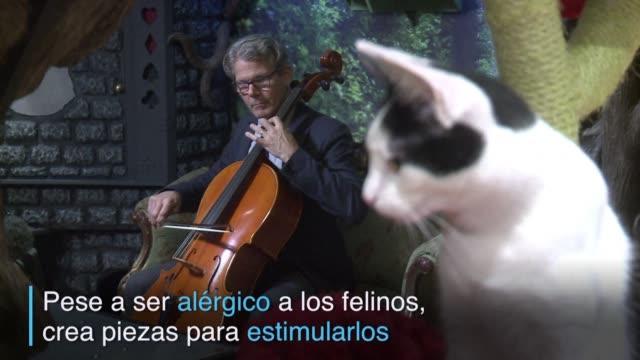 vídeos de stock e filmes b-roll de el compositor david teie grabo un disco entero de musica clasica para estimular a un publico particular los gatos - compositor