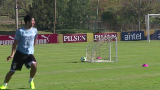 el delantero de la seleccion uruguaya luis suarez sufrio una lesion en los meniscos durante su entrenamiento del miercoles - uruguay stock videos & royalty-free footage