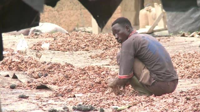el gobierno de costa de marfil trata de retomar el control de sus bosques, amenazados por la plantación ilegal de cacao, pero miles de personas son... - côte d'ivoire stock videos & royalty-free footage