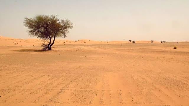 vídeos de stock, filmes e b-roll de el gobierno nigerino decreto a partir del viernes tres dias de duelo nacional despues de que casi 100 migrantes en su mayoria mujeres y ninos... - sedento